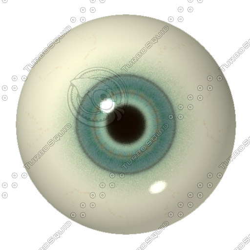 eye22.jpg
