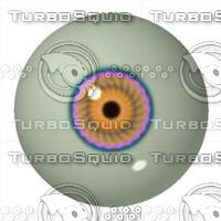 eye31.jpg