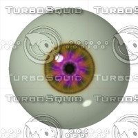 eye80.jpg