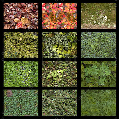 leafs_thumbnail3.jpg