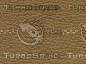 Almond leather.jpg