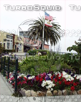 Monterey0002.JPG