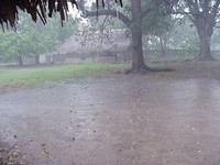 Rain.wav