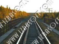Siberian_forest_P1010416orig.zip