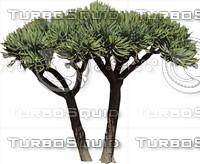 Tree0034.ZIP