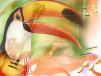 TucanoSound.jpg