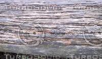 Wood Rot 01.jpg