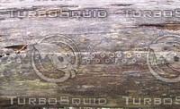 Wood Rot 02.jpg