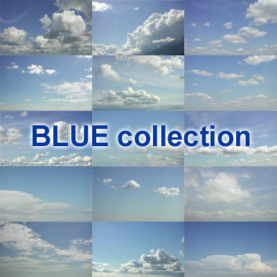 blue collection.jpg