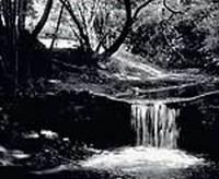 Creek 2.wav
