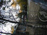 wood0679.jpg