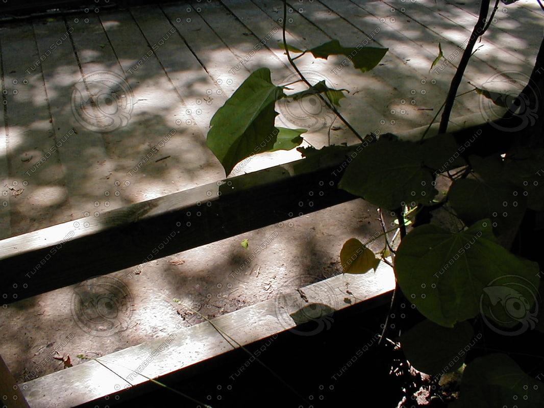 wood0872.jpg