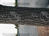 wood0919.jpg