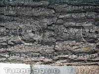 wood0920.jpg