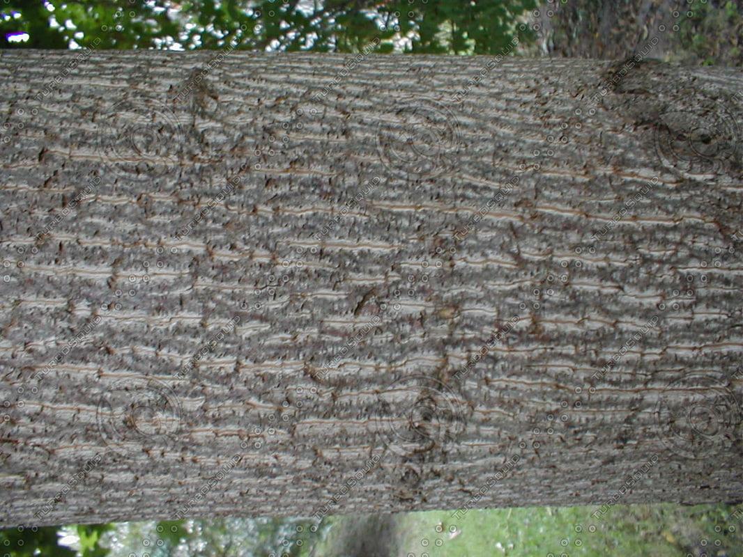 wood0938.jpg