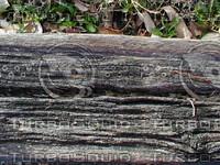 wood0970.jpg