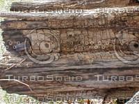 wood1015.jpg