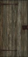 wood_door_12.jpg