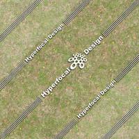 HFDJT_GrassFlowers02_Med.jpg