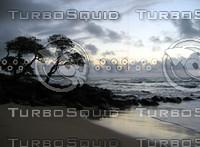 beachside_IMG_4192.jpg