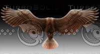 bird wings1.psd
