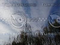 cloud2894.jpg