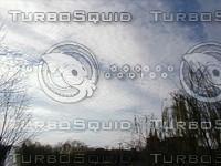 cloud2901.jpg