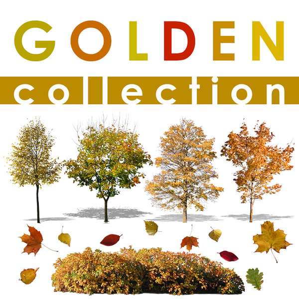 colden collection.jpg