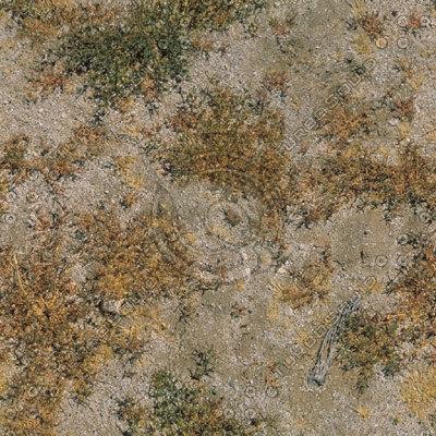 desertfloor1024x.jpg