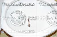flushfish1.jpg