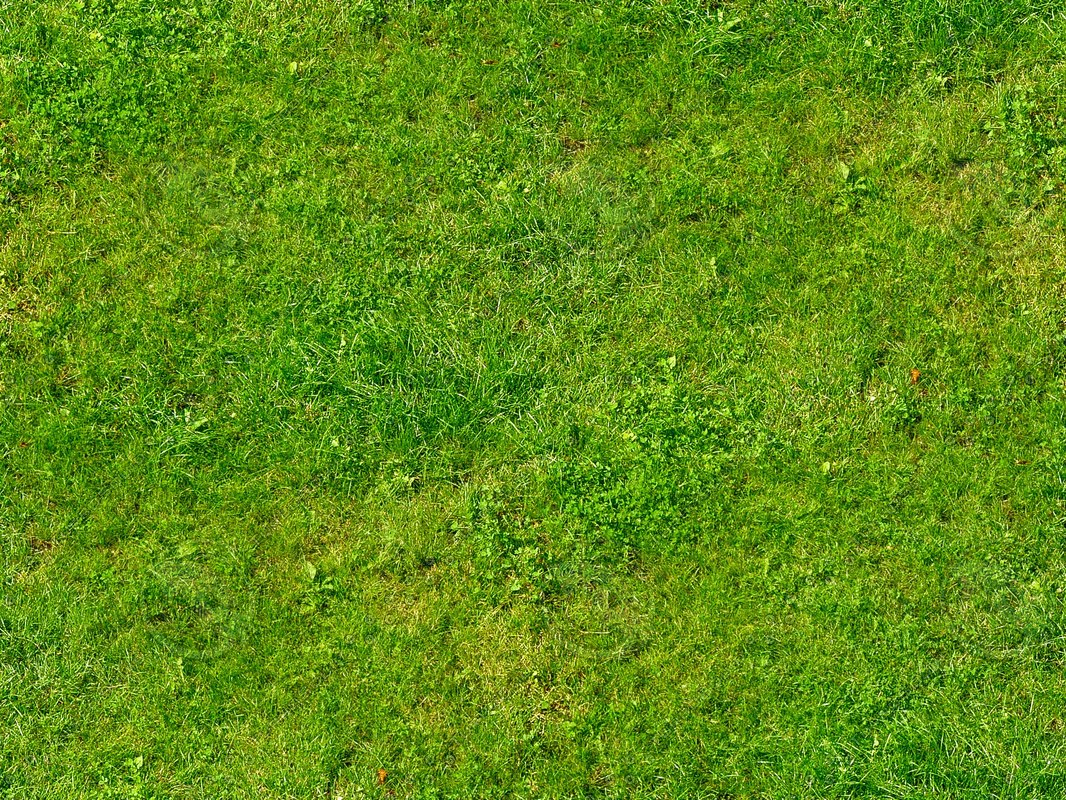 grass_large_patterned.jpg