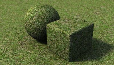 grass_v2_sample.jpg