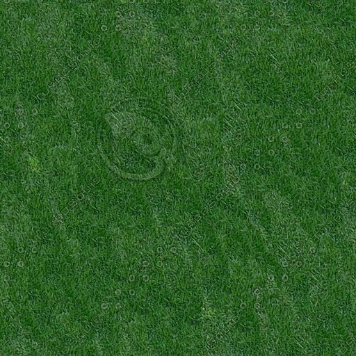 lawn512.jpg