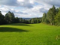 swedish_lawn_view_2.JPG