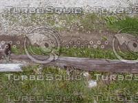 wood0039.jpg