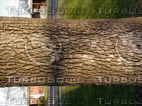 wood0208.jpg