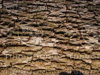 wood0210.jpg