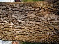 wood0212.jpg