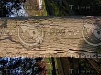 wood0277.jpg