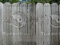 wood0496.jpg