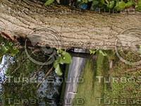 wood0755.jpg