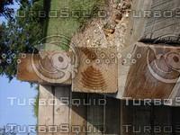 wood0767.jpg