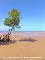Australia landscape 010.jpg