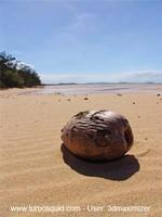 Australia landscape 014.jpg
