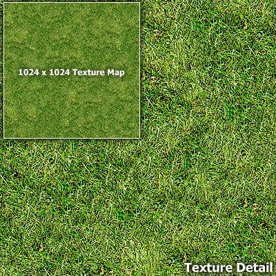 Grass008.jpg