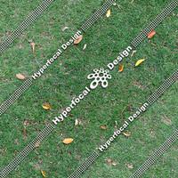 HFDJT_GrassLeaves01_Lge.jpg