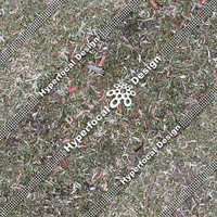 HFDJT_GrassLeaves02_Med.jpg