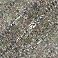 HFDJT_GrassLeaves02_Sml.jpg