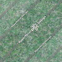 HFDJT_GrassMixed01_Med.jpg