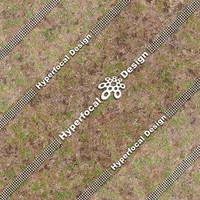 HFDJT_GrassPatchy02_Sml.jpg